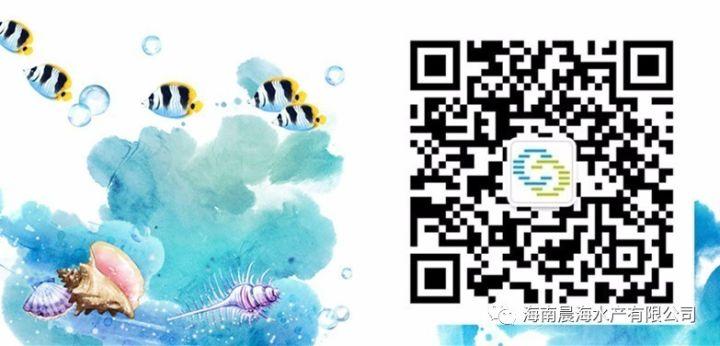 微信图片_20200416094229.jpg